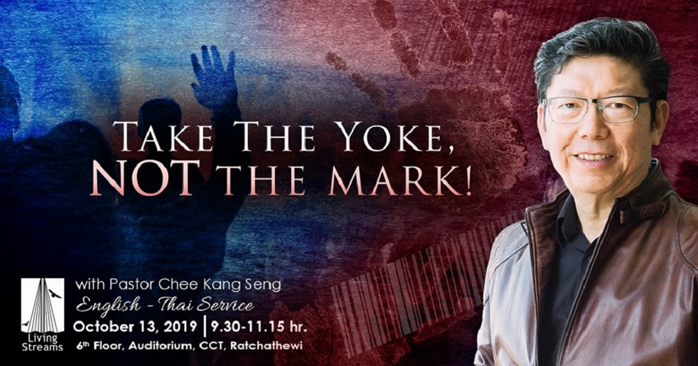 Take the yoke not the mark! Image