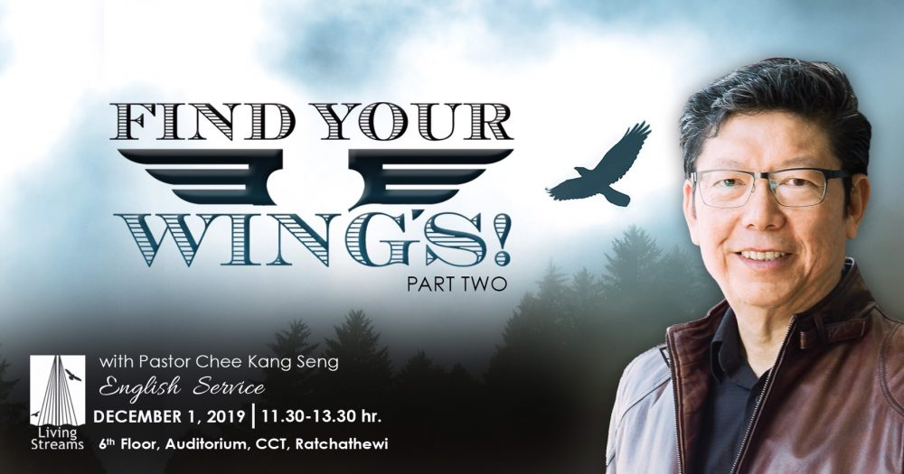 Find your wings! Part 2(Father's Day Celebration) Image