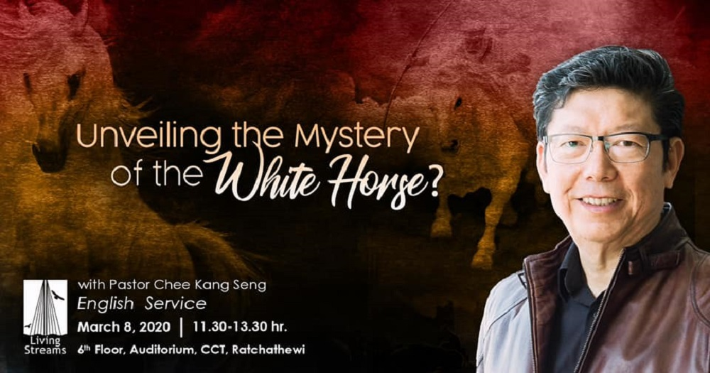 Unveiling the Mystery of the White Horse? Image