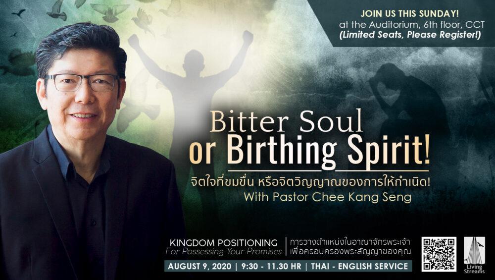 Bitter Soul; Birthing Spirit! Image