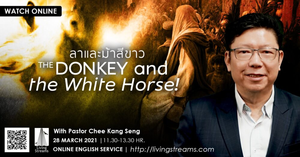 The Donkey and the White Horse! Image